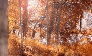 Girl dancing alone in an autumn forest (image credit Ed Gregory via Stokpic)